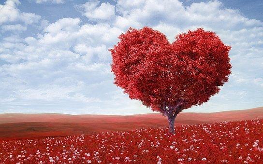 heart-shape-1714807__340
